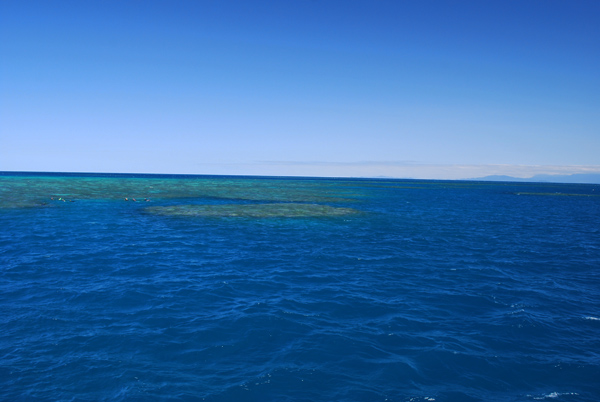Great Barrier Reef - Australia Travel Photos