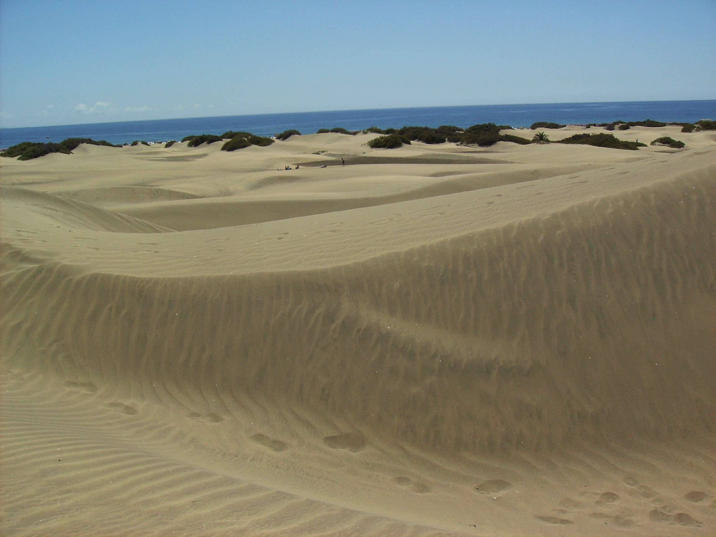 Dunes of Maspalomas: A 4,000 hectacre desert at the southern tip of the island