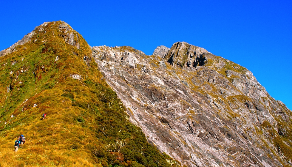 Tussocked Ridge on Mitre Peak
