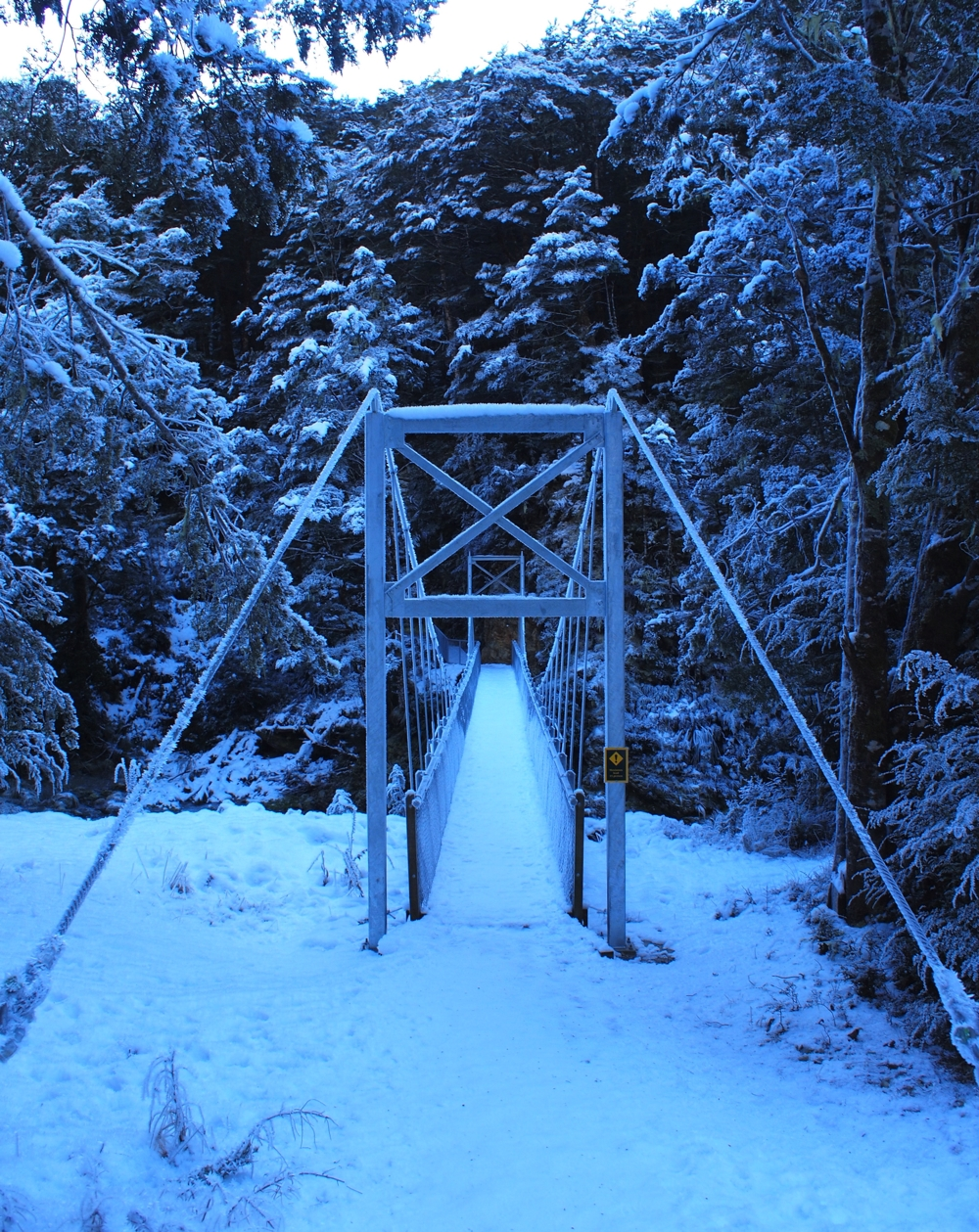 Swingbridge on Routeburn Track