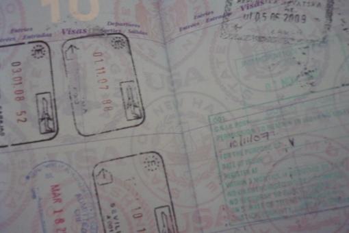 Cat's Passport