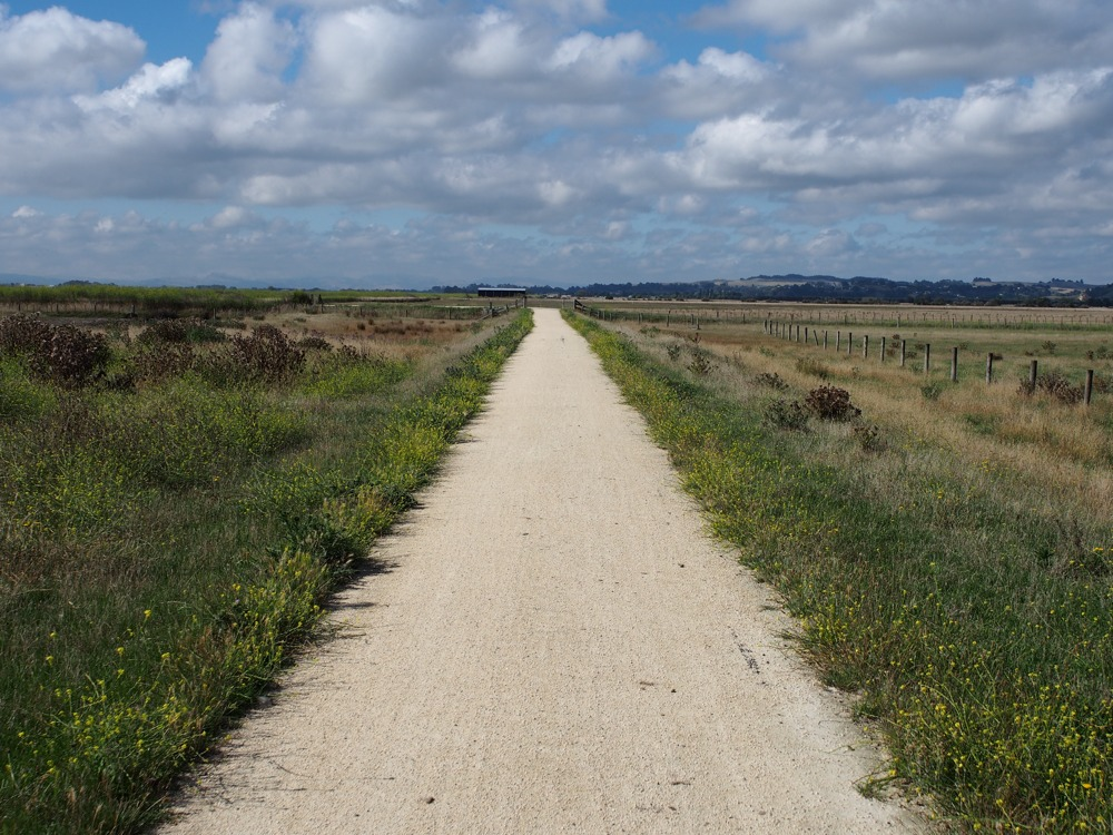 Hawkes Bay Trails 2